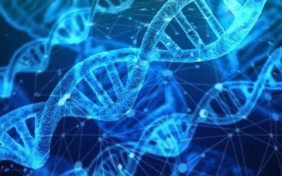 Лаборатория Рамус предлага най-ново поколение генетични тестове, включително неинвазивен пренатален тест (VeriFy)